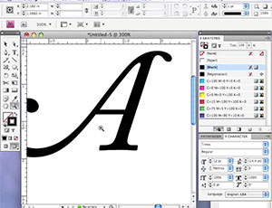 WSINYE Type Tutorial: Decorative Initial using Swash Alternates